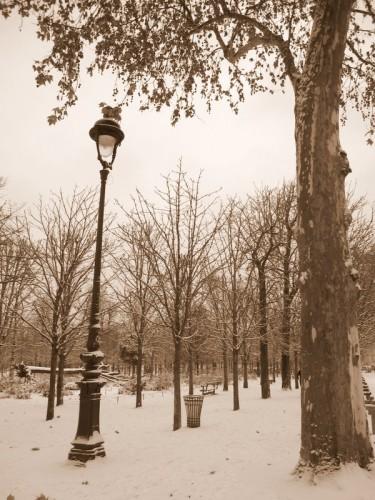 Paris sous la neige jardin des Tuileries