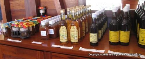 Guadeloupe distillerie Bellevue