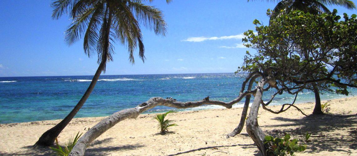 Les vacances en Guadeloupe se passent bien : magnifique plage de Marie-Galante
