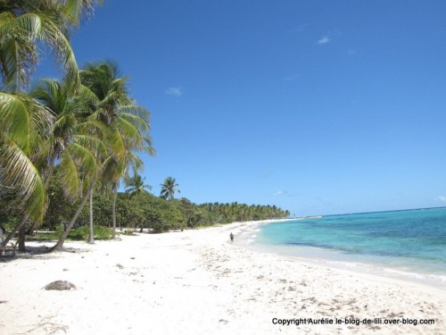 Guadeloupe plage Marie Galante