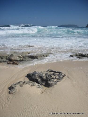 Guadeloupe plage Pointe des chateaux