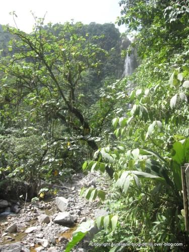 Guadeloupe 2e chute du carbet