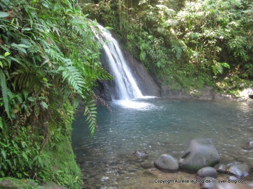 Guadeloupe cascade aux ecrevisses