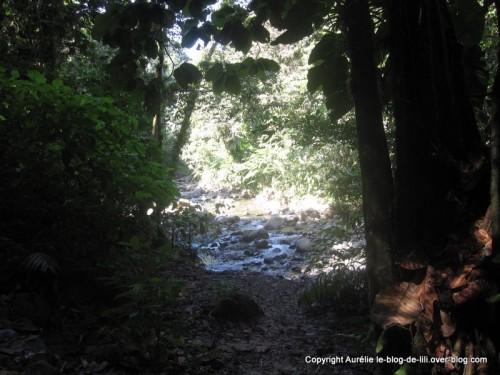 Guadeloupe halte cascade ecrevisses