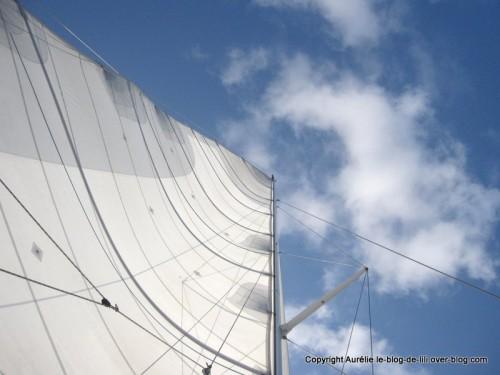 voile catamaran Guadeloupe