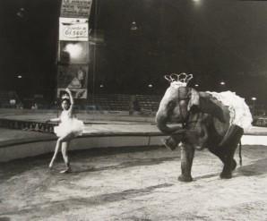 Izis-danseuse-et-elephant.jpg