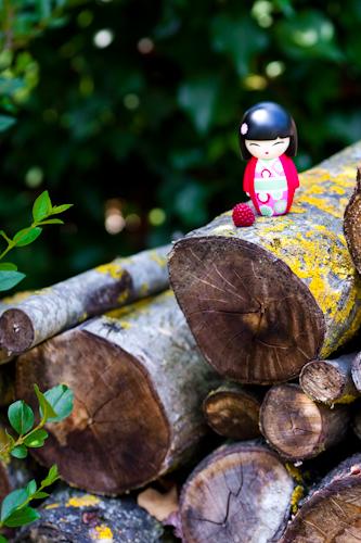 poupee-japonaise-sur-tas-de-bois.jpg