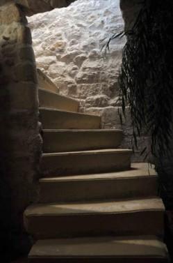 Back_To_Bio_institut-escalier.jpg