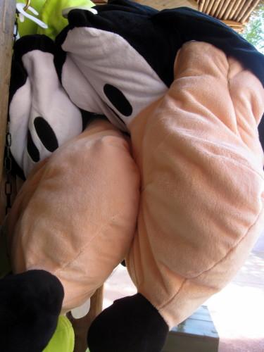 Disney-Dingo.jpg