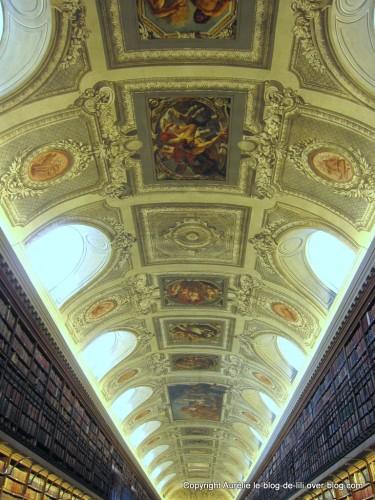 senat-9-plafond-et-livres.jpg