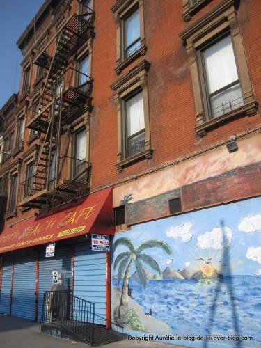 Harlem-tag.jpg