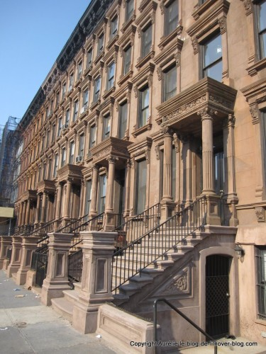 rue-Harlem.jpg