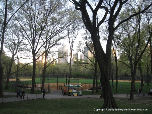 New-York-centre-park-base-ball.jpg