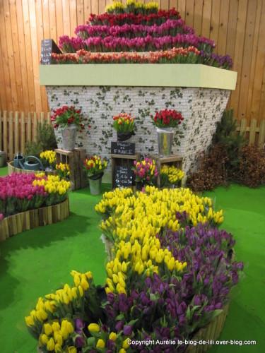 salon-agriculture-11-tulipes.JPG