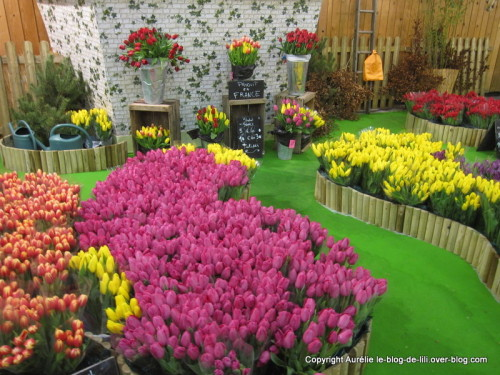 salon-agriculture-12-stand-tulipes.JPG