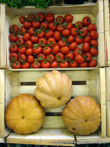 salon-agriculture-19-grappes-tomates.JPG