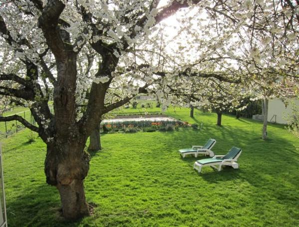 transat-printemps.JPG