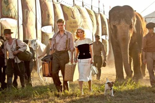 eau-pour-les-elephants-valises.jpg