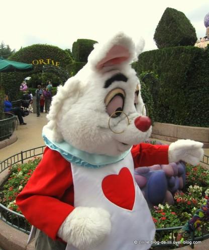 Disneyland-1-lapin-en-retard.JPG