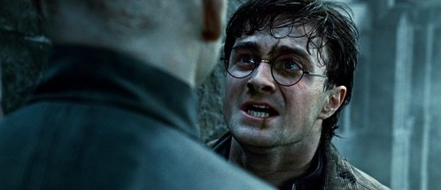 harry-potter-8-contre-vous-savez-qui.jpg