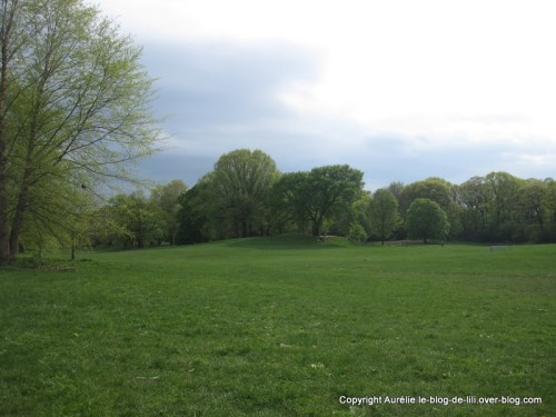 Brooklyn-prospect-park-copie-1.jpg