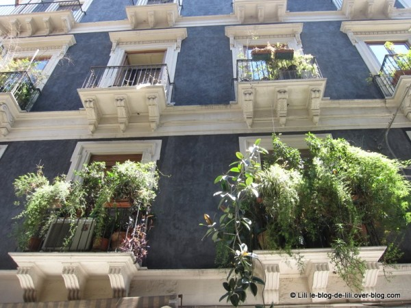 Sicile-10-facade-catane.JPG
