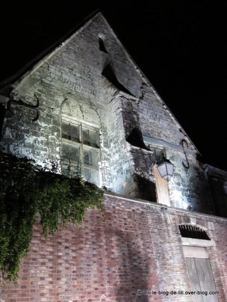 Troyes-en-lumiere-2.JPG