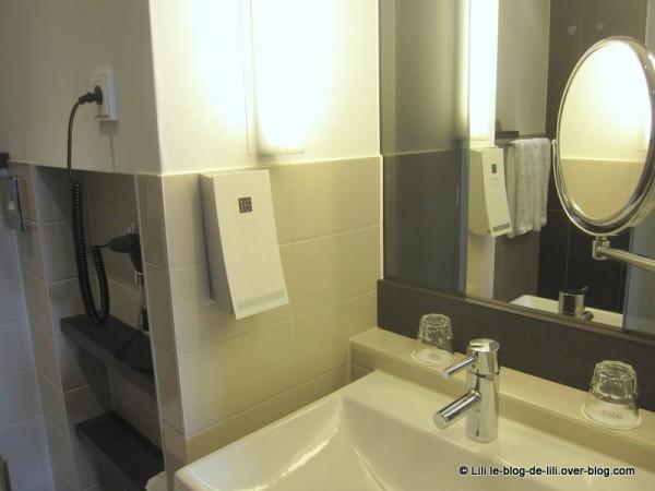 Eden-Manor-Amsterdam-Hotel-8-lavabo.JPG