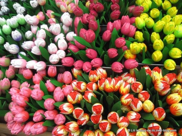 Amsterdam-marche-aux-fleurs-7.JPG