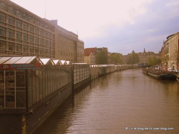 Amsterdam-marche-aux-fleurs-sur-canal.JPG