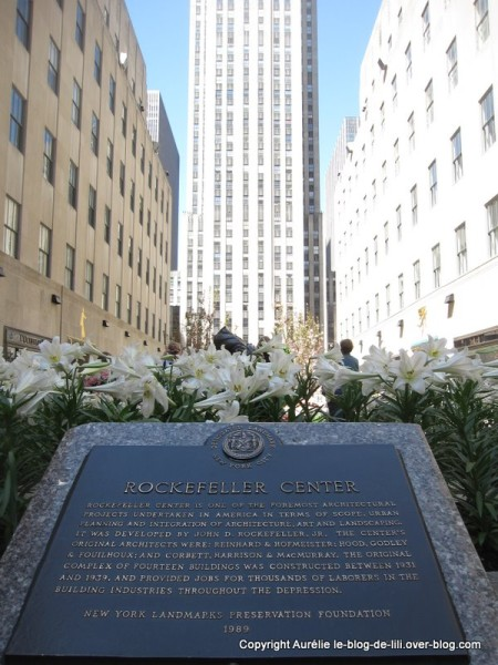 Rockefeller-NYC-10.jpg