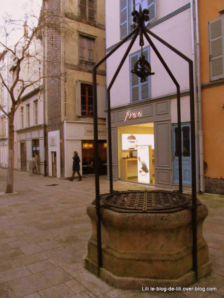 Magasin-Free-Troyes.JPG