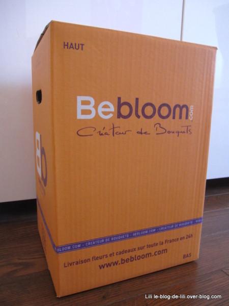 BeBloom-1.JPG