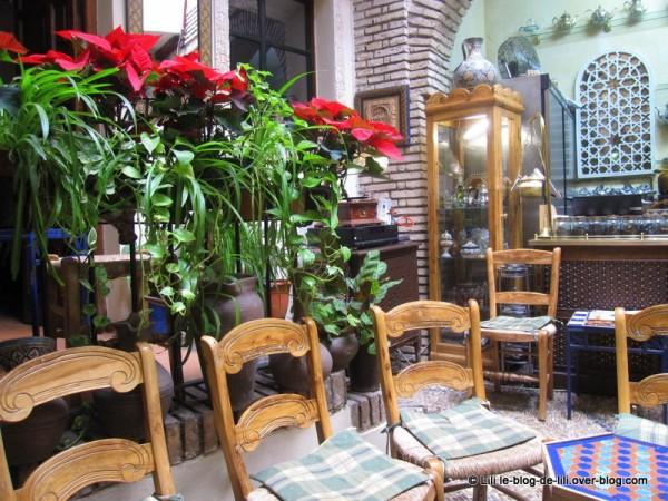 Andalousie-Salon-de-te-Cordoue-5.JPG