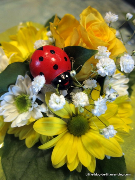fleurs-anniversaire.JPG