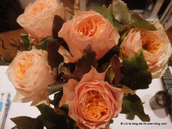 roses-29-ans-lili.JPG