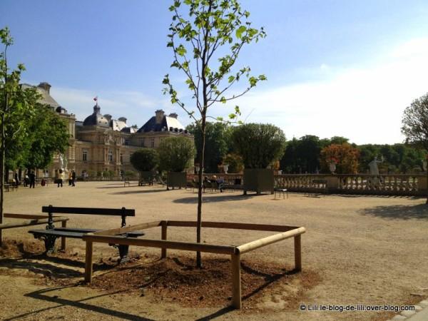 EVJF-jardin-du-Luxembourg.JPG