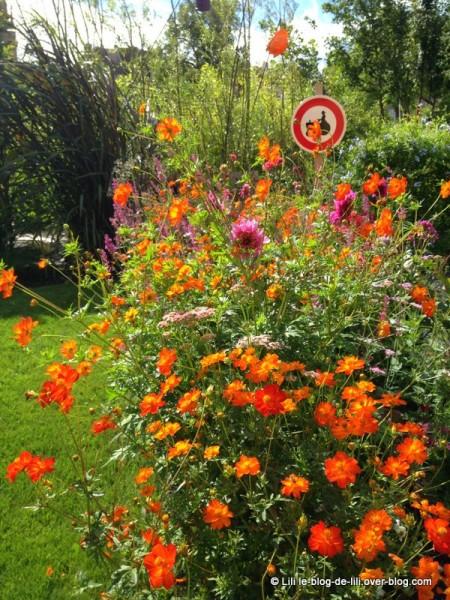 Metz-7-jardin-ephemere.JPG