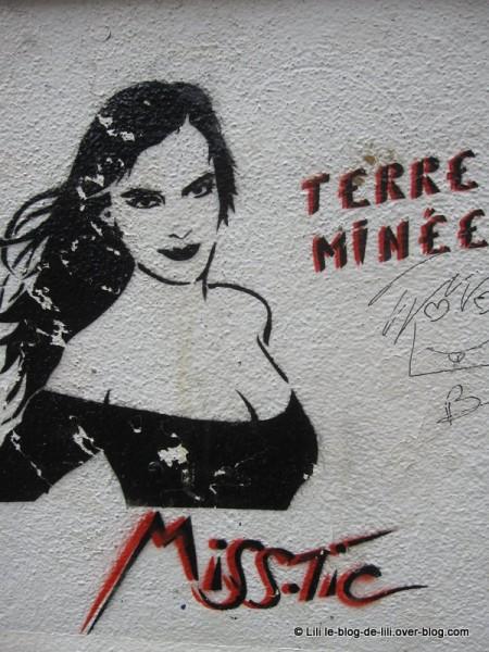 Saint-Brieuc-MissTic-terre-minee.JPG