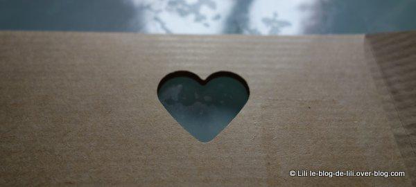 B-coeur-Box-Blanche-porte-3.JPG