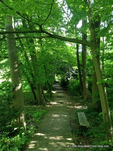 L'île verte du parc de la Vallée-aux-Loups