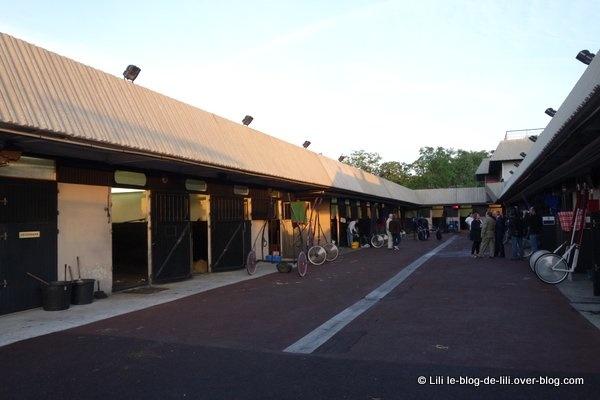 À la découverte de l'Hippodrome de Vincennes