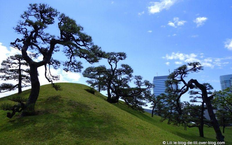 Le jardin Hama-Rikyū, à Tokyo