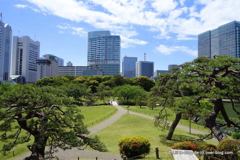 Tokyo : Tsukiji Market, le jardin Hama-Rikyū et la tour de Tokyo