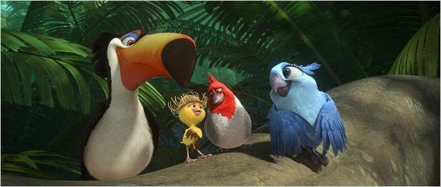 Les oiseaux de Rio 2