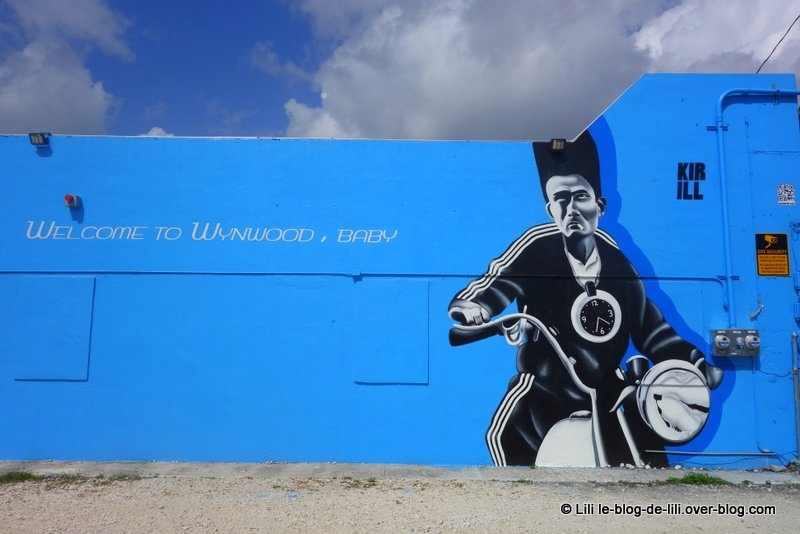 Wynwood, l'incroyable quartier de Miami dédié au street art
