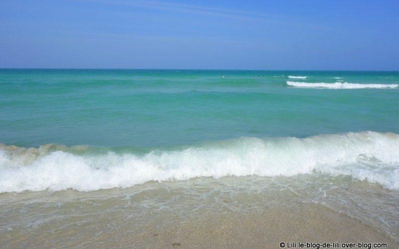 Miami South Beach rencontres sites de rencontre gratuits dans les États-Unis d'Amérique