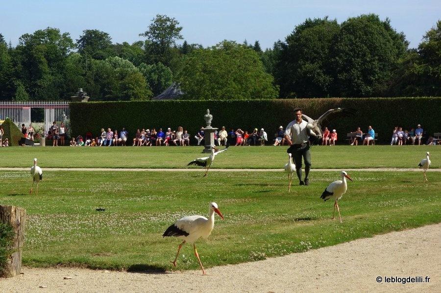 Une journée au domaine breton de La Bourbansais : du zoo au château