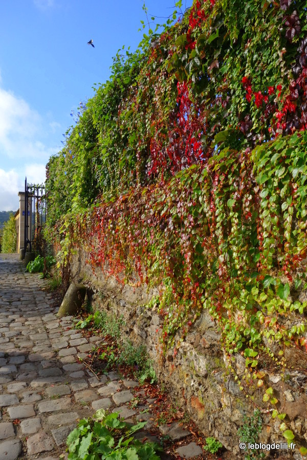 Goûts d'Yvelines (1/2) : escale gourmande à Versailles