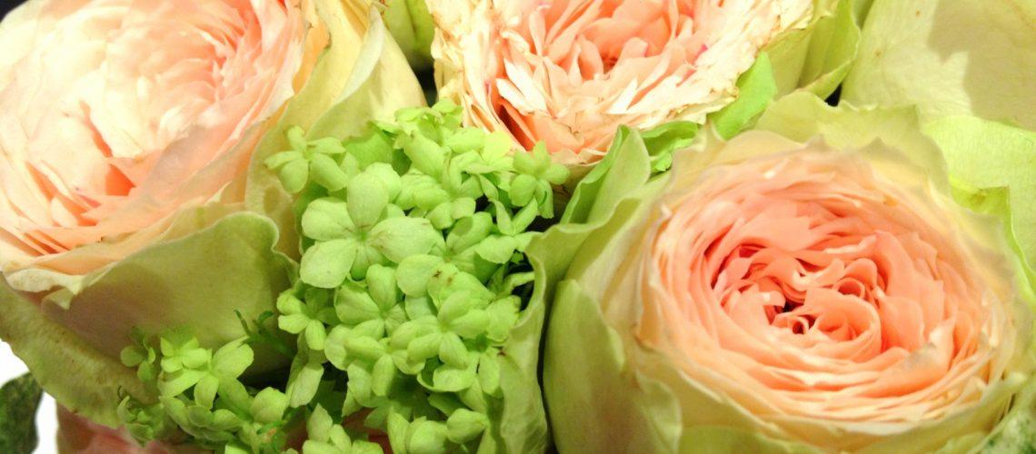 Un bouquet de fleurs reçu pour Noël